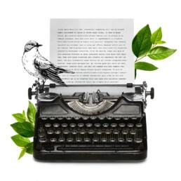 codice etico azienda | Caglificio Clerici