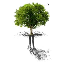 rispetto della natura | Caglificio Clerici